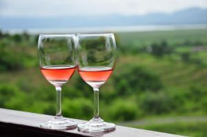 Vineyard near Inle lake