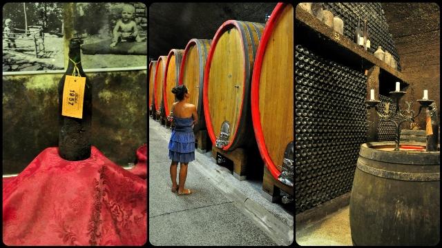 Klet Gorška Brda - the biggest wine cellar in Slovenia