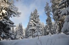 View from M&M - winter wonderland