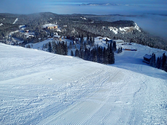 Olympic slalom