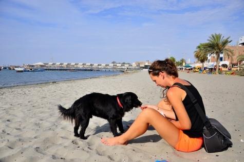 Company on the beach