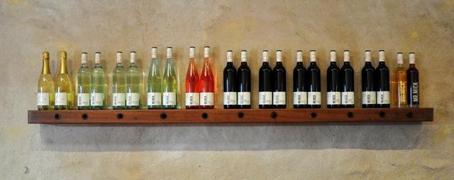 adelaide, wine & co (13)