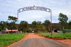 Camek farm