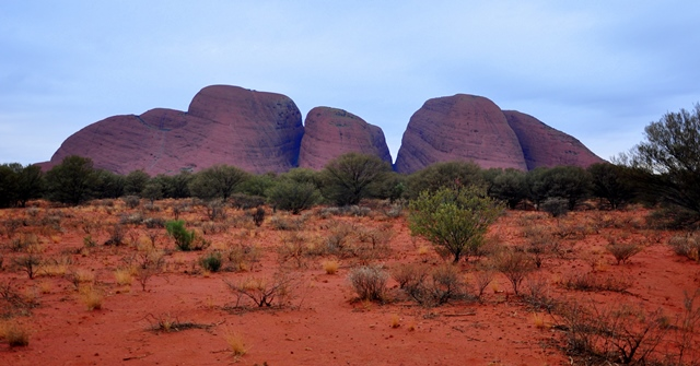 red centre (38)