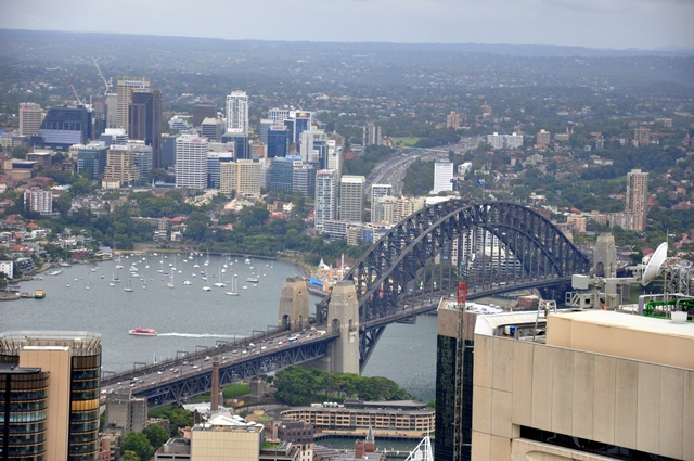 Sydney (8)