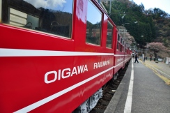 Oigawa train