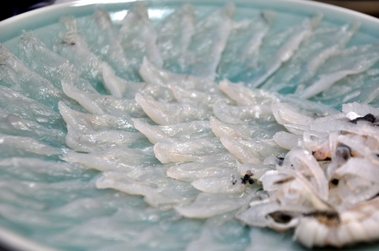 fugu (3)