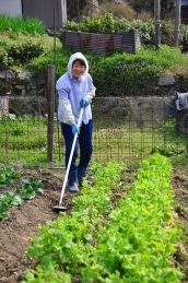 Local lady gardening