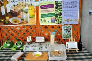 Olive oil tasting