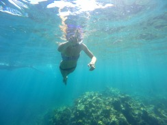 Tour C snorkelling