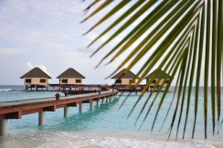 maldives (3)