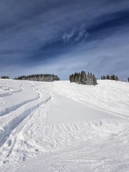 Powder heaven in Saalbach