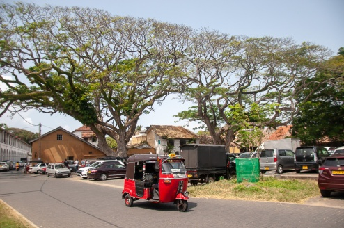 galle (9 of 1)