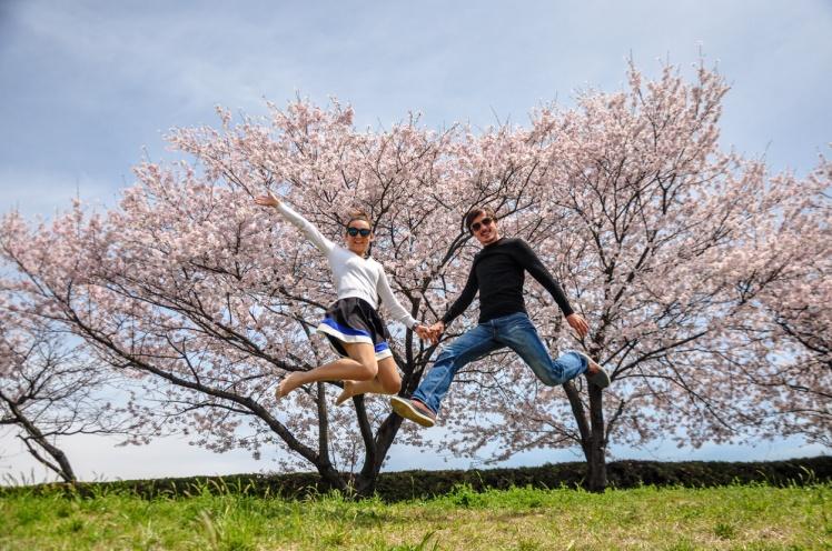 sakura hiroshima