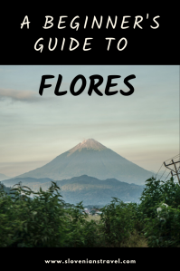 A beginner's guide to Flores